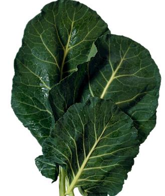 Diet Tips: 10 Healthiest Leafy Greens | Shape Magazine