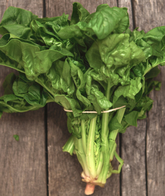 The best healthiest leafy greens