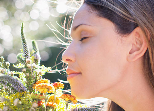 Your Sense of Smell Is Way More Important Than You Think