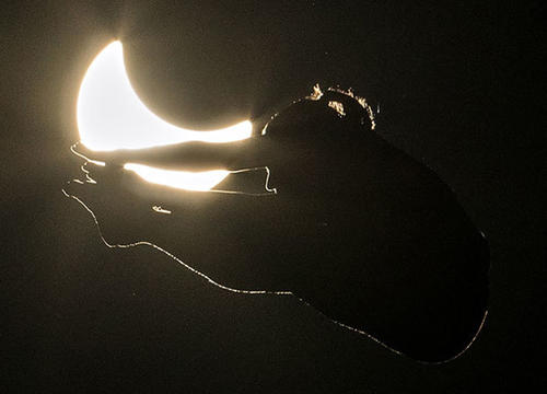 You Need to See These Cliff Diving Photos Taken During the Solar Eclipse