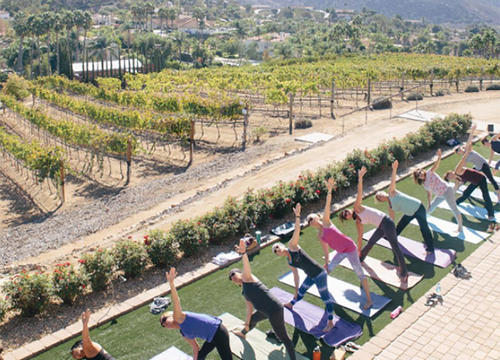 People Are Combining Wine and Yoga In the Best Way Possible