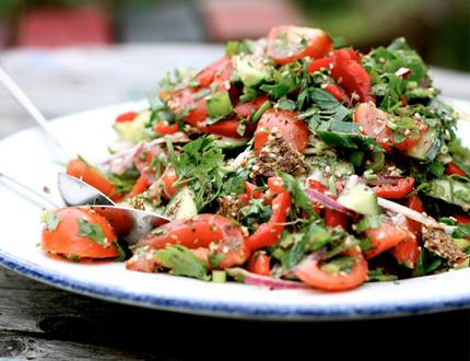 Raw diet recipe protein diet foods list raw diet recipe forumfinder Gallery