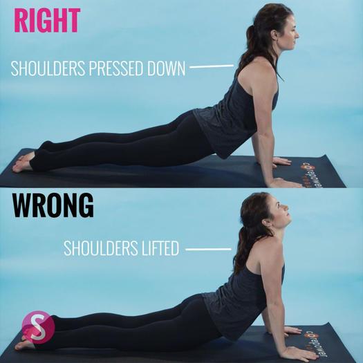 How to do upward dog in yoga