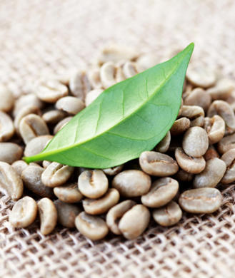 Pure green coffee bean danmark photo 9