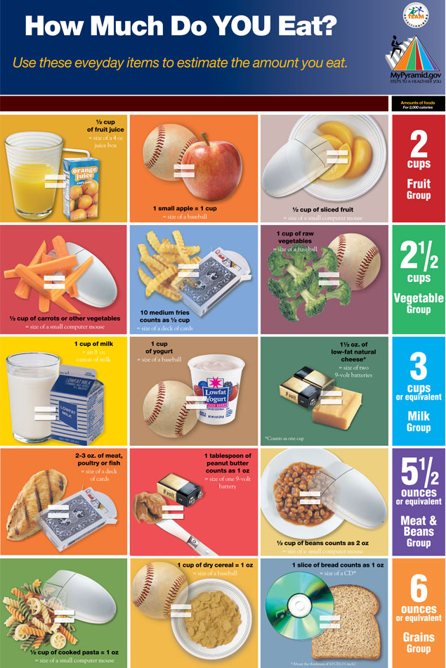 Easy Portion Control Diagram, Easy, Free Engine Image For ...