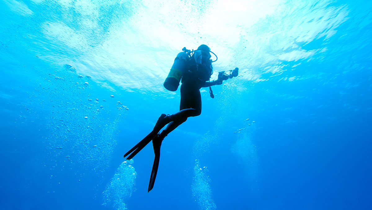 Divemaster Internship In Minnesota Dive Mentor