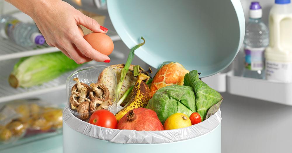 wide-wasted-food.jpg