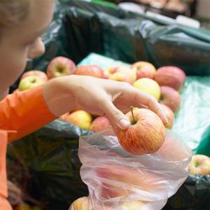 Europe Bans U.S. Apples