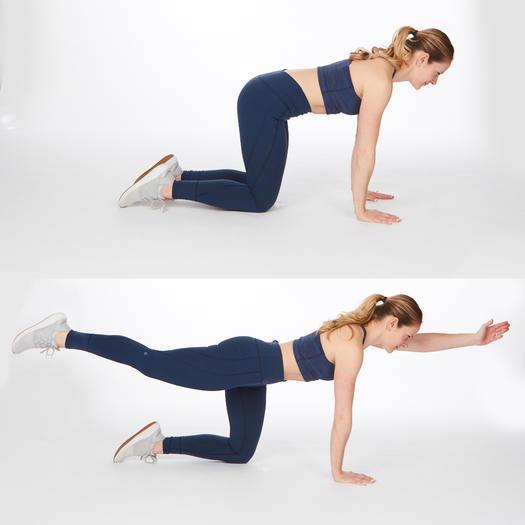 bird-dog-easy-abs-exercises